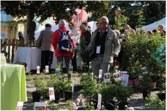 (14) Entre Cours & Jardins