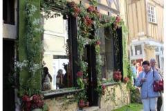 (20) Entre Cours & Jardins